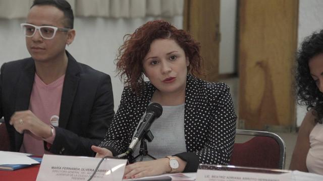 Comité INJUVE LGBTI (3).JPG